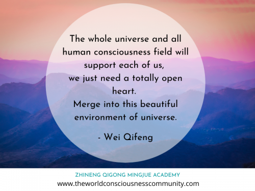 The whole universe - Wei Qifeng